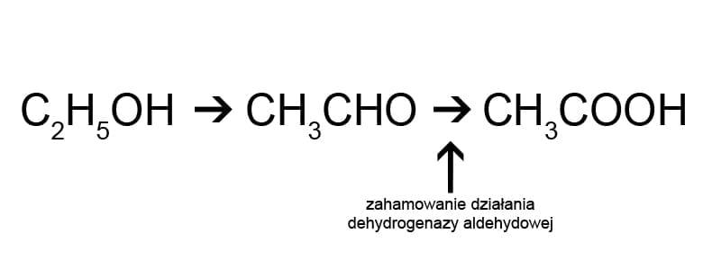 Reakcja disulfiramowa