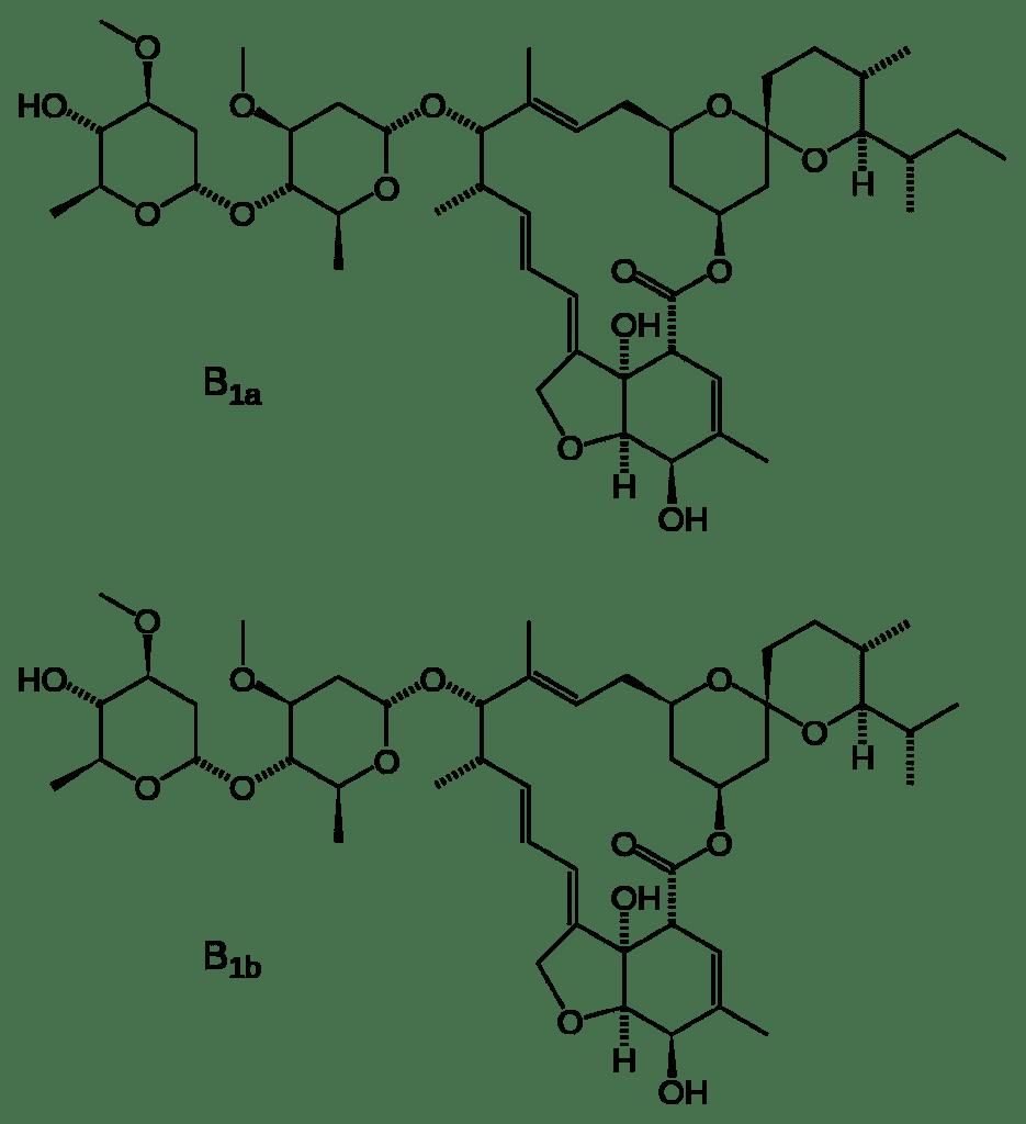 Iwermektyna jako potencjalny lek na COVID-19 - przegląd badań naukowych