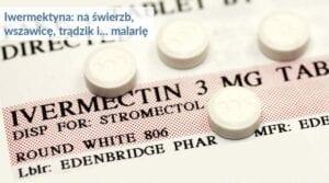 Czy iwermektyna jest skuteczna w leczeniu COVID-19? [Q&A]