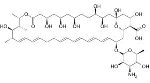 Wzór strukturalny nystatyny.