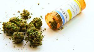 Dawkowanie medycznej marihuany.