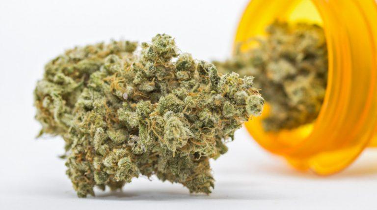 Pacjent stosujący medyczną marihuanę nie może prowadzić pojazdów.
